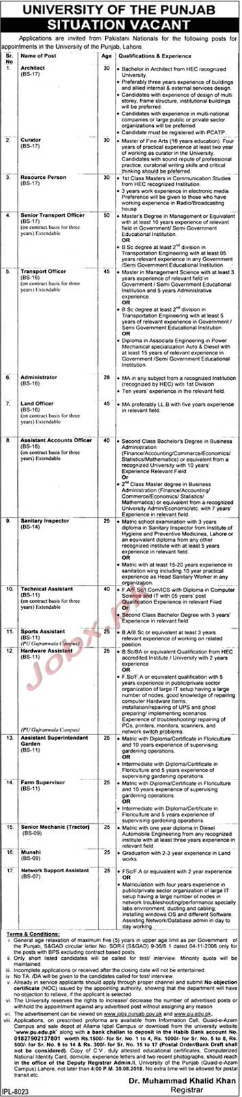 Fresh Jobs in Punjab University Lahore Aug 2018
